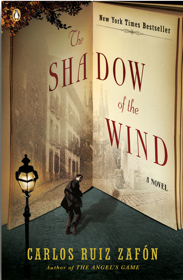 shadow-of-wind-book