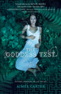 the goddess test book